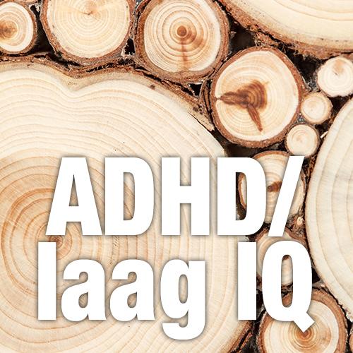 Morris met ADHD